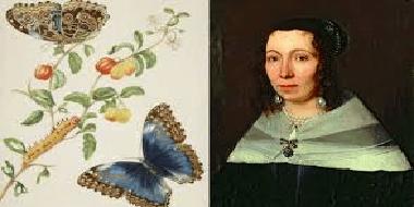 Maria Sibylla
